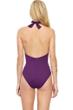 Gottex Au Naturel Aubergine V-Neck Halter Surplice One Piece Swimsuit
