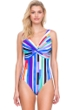 Gottex Carnival V-Neck Plunge One Piece Swimsuit