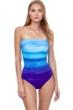 Gottex Twilight Bandeau One Piece Swimsuit