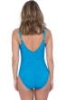 Profile by Gottex Shalimar Peacock D-Cup Lace V-Neck Strappy One Piece Swimsuit
