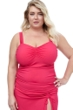 Profile by Gottex Tutti Frutti Pink Plus Size Sweetheart Underwire Tankini Top